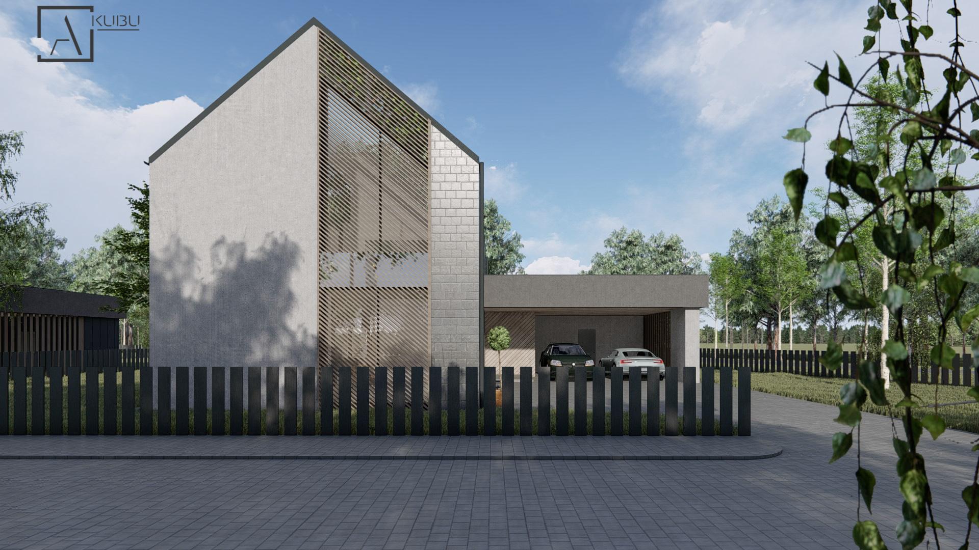 Modernus 2 aukštų namas su garažu - TITANAS