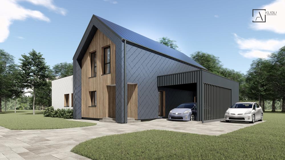 Dviaukštis namas su garažu