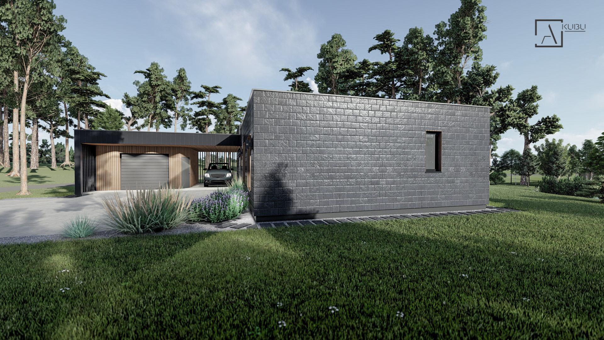 Namų projektas - KOBALTAS
